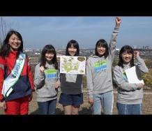 『【動画】つばきファクトリーが行く!見所満載、春の泉佐野丘陵緑地!Part1~3』の画像