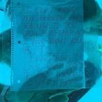【動画】「水中プロポーズ」した米国人男性、そのまま溺れて死亡