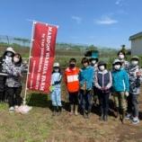 『Waseda Maroon Farm by TAO Tokorozawa Project Vol.446:土寄せ,種まき,除草作業』の画像