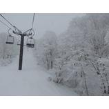 『昨日からの降雪で連日のプチパウダー!』の画像