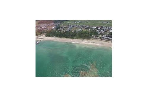 【悲報】水深80cmの海に飛び込みタヒ亡・・・・・・・・・・・のサムネイル画像