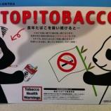 『煙草の害を教える白パンダ黒パンダ』の画像