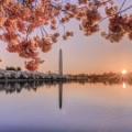 Du lịch khám pháWashington DC