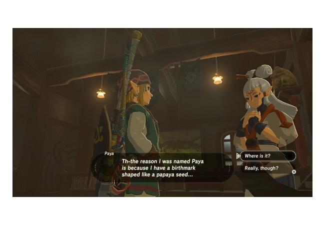 【ゼルダの伝説 ブレスオブザワイルド】女NPCキャラ『パヤ』