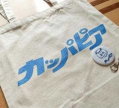 県内2店舗で販売!『ヴィレッジヴァンガード』で高崎にかつてあった遊園地『カッパピア』とのコラボグッズ販売中!買ってみた。
