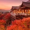 【悲報】日本さん、秋が消滅する