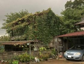 【悲報】長嶋茂雄の生家、幽霊屋敷に