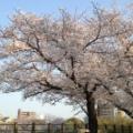 女児脳損傷で福岡大病院に賠償命令 術後の低血糖見逃す