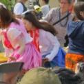 第23回湘南祭2016 その125(湘南ガールコンテスト2016・S★スパイシー)
