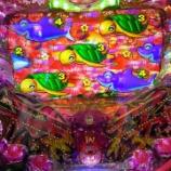『3月6日 マルハン小岩』の画像