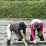 『伊勢丹新宿店のお二人が田植えと蔵見学に』の画像