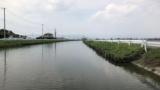 テナガエビ釣りに川に来たで(※画像あり)