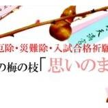『北野天満宮 招福の梅の枝「思いのまま」授与 2020年1月1日~ 【情報】』の画像