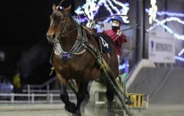 『【ばんえい・チャンピオンC結果】5歳馬アオノブラックが人気に応えて圧勝』の画像