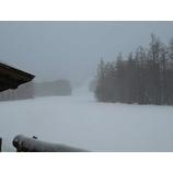『雪の朝。プチパウダー日和です。』の画像