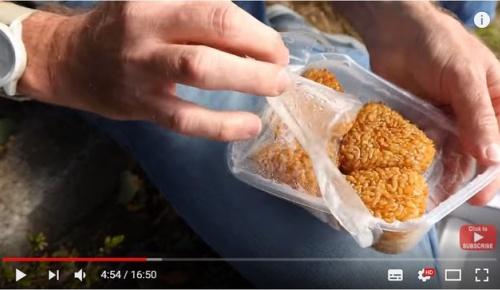 海外「日本の自販機は面白い」明治神宮のニチレイ食品自販機で売られる様々な食品に外国人驚き