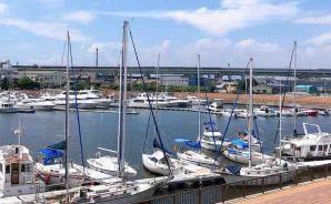 旧堺港を見渡しながらのランチ