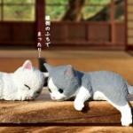 「ふちやすみ にゃんこ」縁側などのフチでおやすみする猫がガチャフィギュアになった!