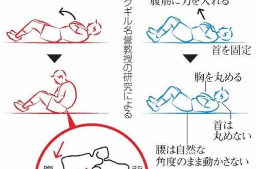 【筋トレ】腹筋(状態起こし)って回数多い方がいいの?wwwwwwwのサムネイル画像