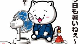 【猛暑】熱中症で11人死亡、こまめな水分補給をお忘れなく