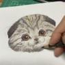 母娘でネコを描く練習をする
