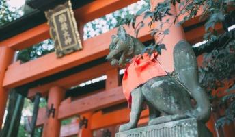 稲荷神社の神主だけど質問ある?