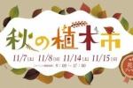 造園屋さんで『秋の植木市』が11月7・8・14・15日に開催!~「マルシェでんがな」って何でんがな!?盛りだくさんな4日間~