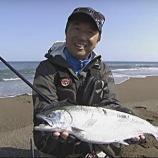 『ヒラメルアーのパイオニア、堀田光哉氏も北海道、道南で海サクラマスを釣る。』の画像