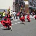 2015年横浜開港記念みなと祭国際仮装行列第63回ザよこはまパレード その42(ザ ヨコハマ スカウツ D&B.C & ヨコハマ リトル メジャレッツ)
