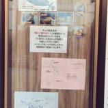 『「欅って書けない?」のペアロケで小池美波と土生瑞穂が書いたイラストメッセージを12/31までサンシャイン水族館に掲載!』の画像