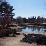 『2月の「国営昭和記念公園」』の画像