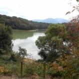 『【福岡】秋を見つけに散策したよ』の画像
