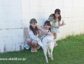 AKB川栄李奈ちゃんのラブ犬CMが超絶かわいい