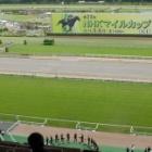 『【写真で振り返る】 馬主目線のNHKマイルカップ』の画像
