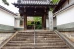 想善寺にはデッカイ『いちょうの木』がある!~河内三十三所観音霊場の第16番目のお寺です~