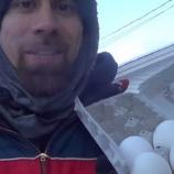 『氷点下30度の世界でしか見られない作品「普通の卵がアートへ変わる瞬間」』の画像