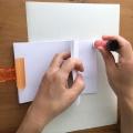 【絶滅危惧種をポップに描き、本を作ろう!】 用意するもの & 作り方