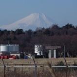 『1月の国営昭和記念公園Ⅰ;立川市』の画像
