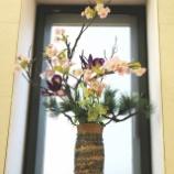 『鉄眼桜と今週の待合室の花』の画像