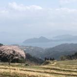『春ブログの定番!今年の桜は雪化粧に』の画像