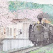 桜満開の天浜線尾奈駅とC58