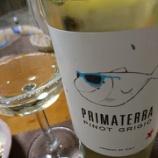 『Pinot Grigio delle Venezie PRIMATERRA(プリマテッラ ピノグリージョ デッレ・ヴェネツィエ)[2014]』の画像