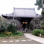 「藍川京」の部屋