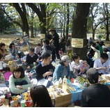 『ピクニックとバースデーと』の画像