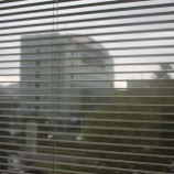 『台風接近中!セキビズは相談業務を行っています。』の画像