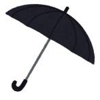 森ゆうこ議員、自衛隊の閲兵で一人だけバカでかい傘をさすwwwwwwwww