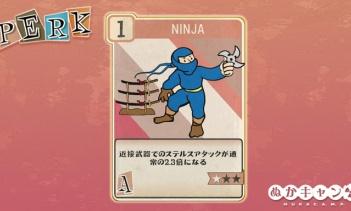 Fallout 76:Ninja(Agility)