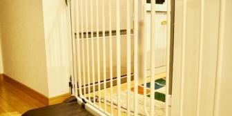 保育園の扉のゲートのロックを前の保護者に閉められた。確かにそういうルールだけど、後から俺が来るのわかってるんだから開けておいてくれても良くない?