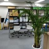 『【早稲田】技能科就労クラス:最近の職場見学事情について♡』の画像