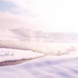 『「全部雪のせいだ!」キャンペーン』の画像